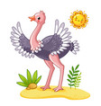 cute ostrich stands on meadow vector image vector image