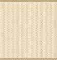 knit beige pattern vector image vector image