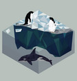 low poly penguins and orca seascape poster vector image