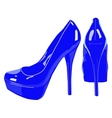 picture of women shoe on white background vector image vector image