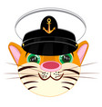 animal tiger in service cap of the captain vector image vector image