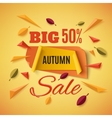 Big autumn sale banner with abstract leafs vector image vector image