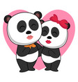 padna in love on white background vector image vector image