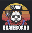 panda skateboard sunset retro vector image