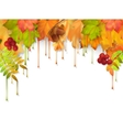 Autumn Dripping Paint Leaves vector image vector image