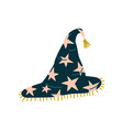 black witch hat with stars magic object vector image