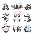 cute panda bear set funny animal character panda vector image