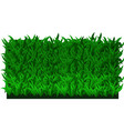 fresh green grass vector image vector image