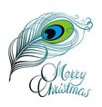 Merry Christmas card with feather vector image vector image