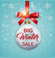 seasonal winter christmas sale vector image