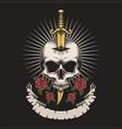 skull dagger rose vector image