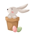 Gray easter rabbit bunny traditional symbol of vector image vector image