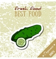 Healthy Food Cucumber vector image vector image