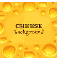 holland cheese background tasty food vector image
