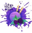 ice cream blackberry ball fruit dessert choose vector image vector image