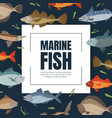 marine fish banner template seafood market shop vector image