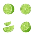 Set of Fruit Lime vector image
