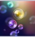 Shiny soap bubbles