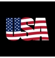 US inscription stylized flag on a black background vector image vector image