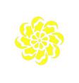 yellow chamomile flower logo plant vintage vector image