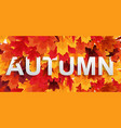 abstract autumn background wiyj falling leaves vector image vector image