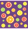 collection of citrus slices vector image vector image