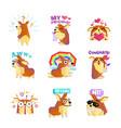 corgi dog cartoon message icons collection vector image