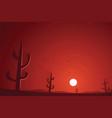 desert and cactuses sunset scene vector image
