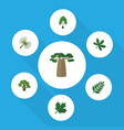 flat icon nature set of baobab maple tree and vector image vector image