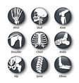 skeleton system icon with bulging glass cover vector image