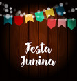 brazilian festa junina greeting card invitation vector image vector image