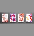 colorful covers design set with textures closeup vector image vector image