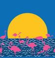 flamingo on sea sitting sun vector image