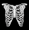 human ribcage hand drawn line art print vector image vector image
