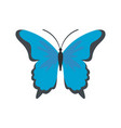 insect butterfly icon flat style vector image