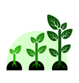 profit growth concept vector image