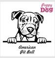 puppy american pit bull - peeking dogs - breed