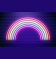 rainbow neon bright vector image