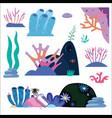 underwater plants and inhabitants vector image
