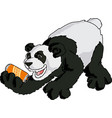 asia panda character with a can beer vector image vector image