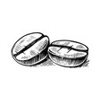 coffee bean sketch hand drawing vintage clip art vector image vector image