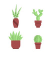 collection of office plants and cacti indoor vector image vector image