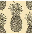 pineapple 213 02 vector image vector image