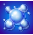 Realistic shiny transparent water drop bubbles on vector image vector image