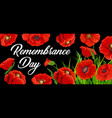 remembrance day poster with poppies card vector image vector image