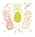 set of three pastel pineapple fruit styles vector image