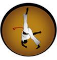 capoeira vector image vector image