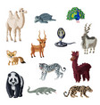 cartoon colorful asian animals collection vector image vector image