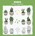 collection of cactus plant vector image