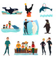 dolphinarium icons set vector image